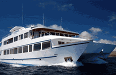 Millennium catamaran tours deals
